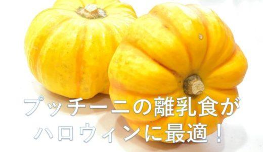 プッチーニ(ミニカボチャ)の離乳食。彩りがキレイなのでハロウィンにも最適!
